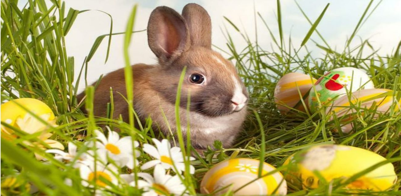 Święta Wielkanocne wgórach